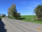 スイス、トーマス、東北