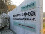 Tsunami Memorial Park Nakanohama